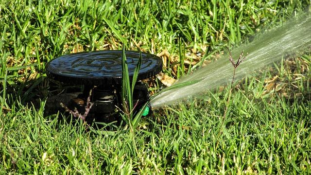 vanding af haven